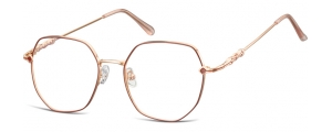 L121;;Oro rosa lucido + rosso opacoLadies Metal Frame - Stainless Steel;53;18;144