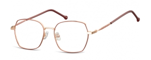 L124;;Oro rosa lucido + rosso opacoLadies Metal Frame - Stainless Steel;53;17;144